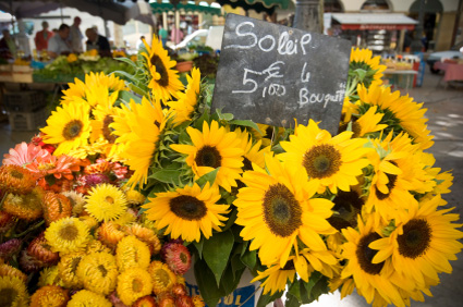 Photo of yellow sunflowers at a French market in France